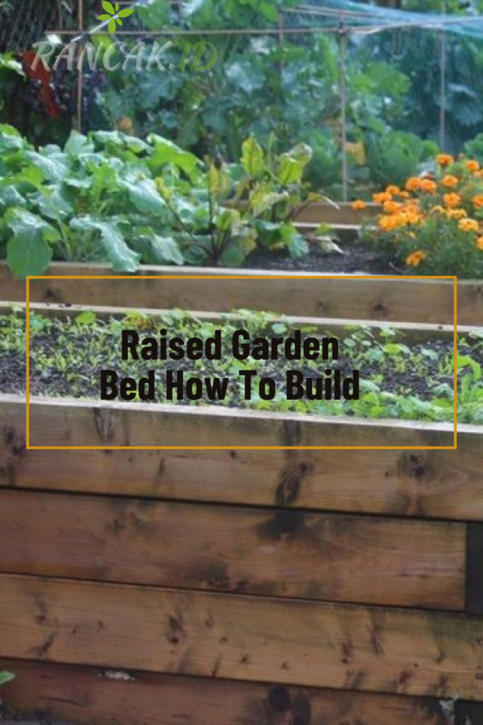 Raised Garden Bed How To Build