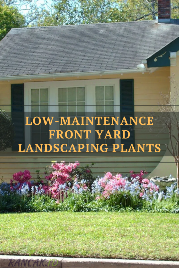 Low-Maintenance Front Yard Landscaping Plants
