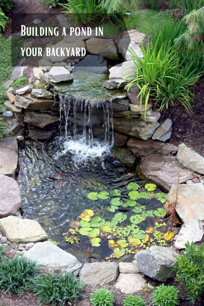 Building a pond in your backyard