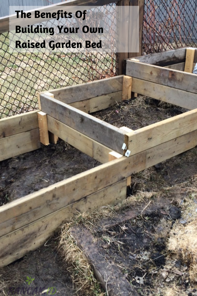 The benefits of building your own raised garden bed