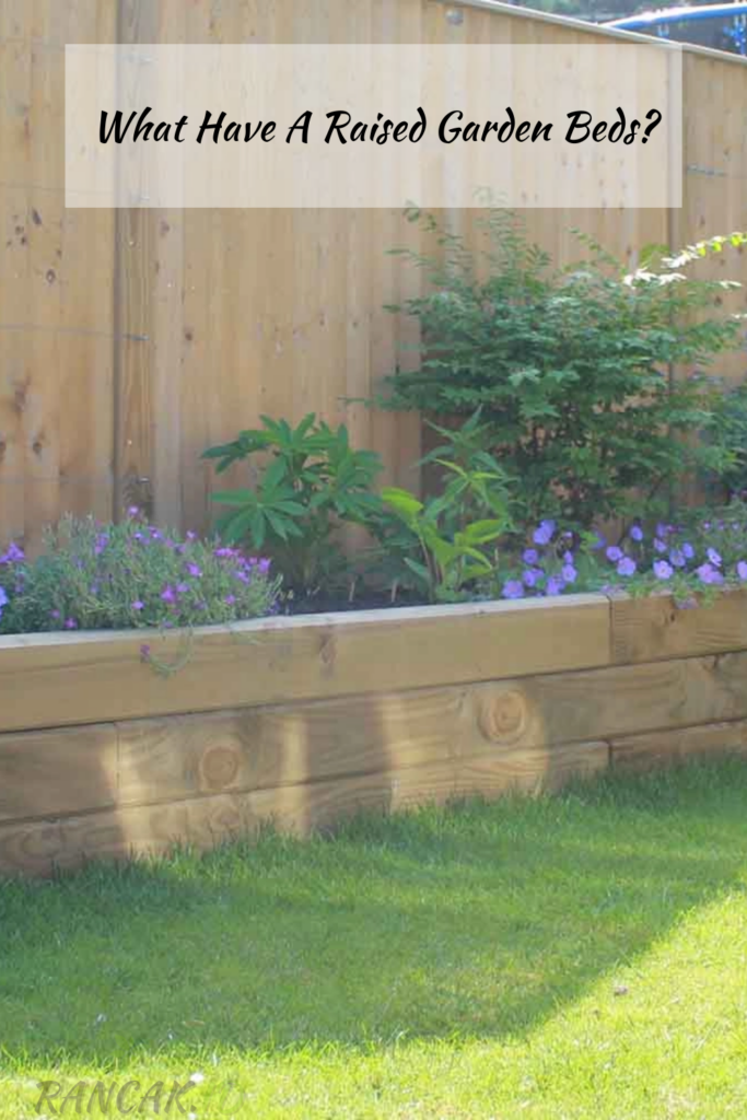 What Have A Raised Garden Beds_