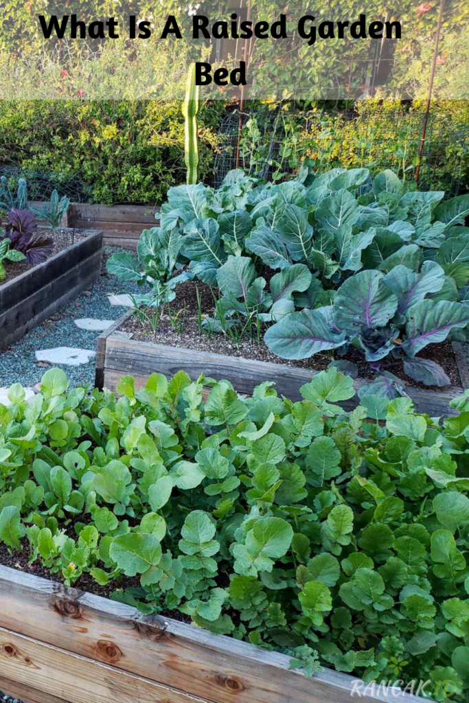 What Is A Raised Garden Bed, And Why Should I Use One