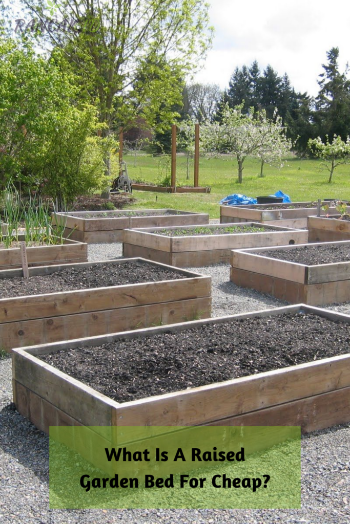 What Is A Raised Garden Bed For Cheap_