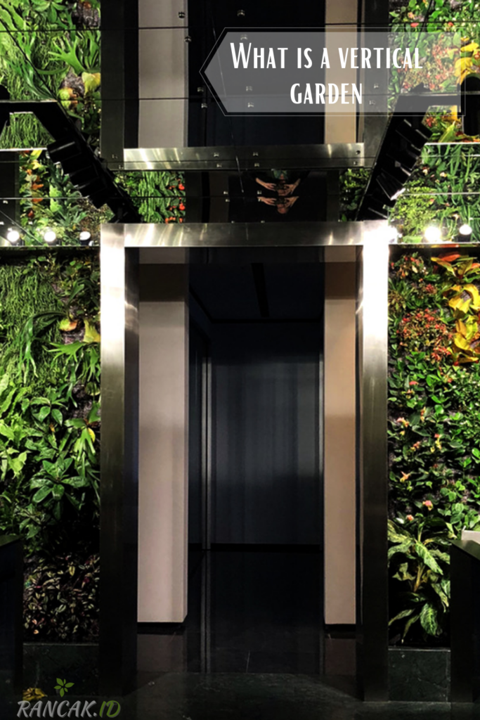 What is a vertical garden and how does it work