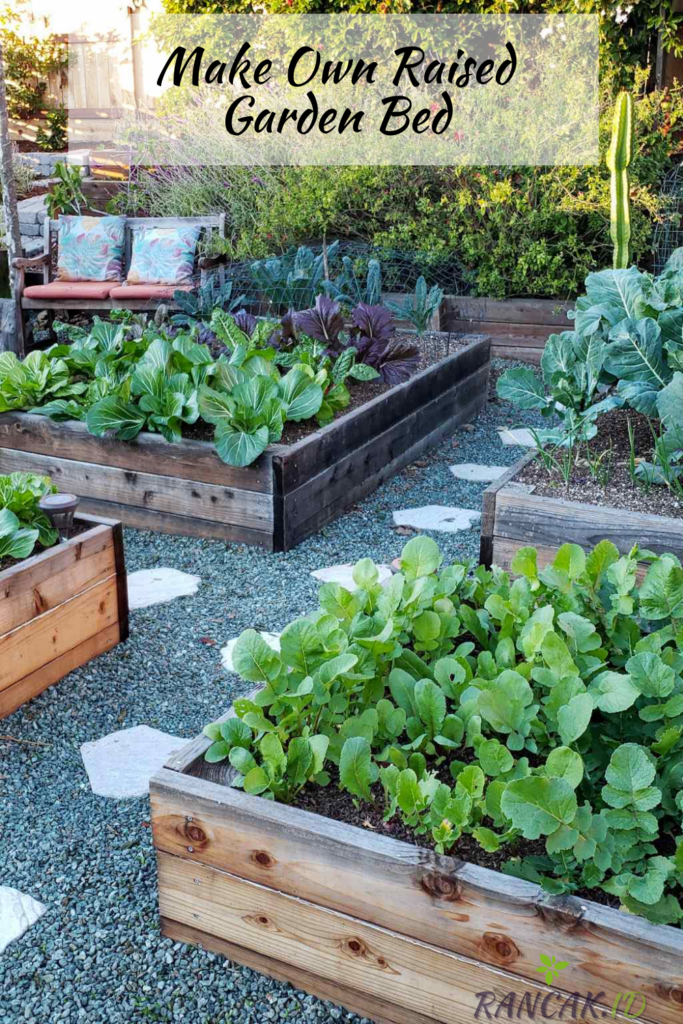 Why You Should Make Your Own Raised Garden Bed
