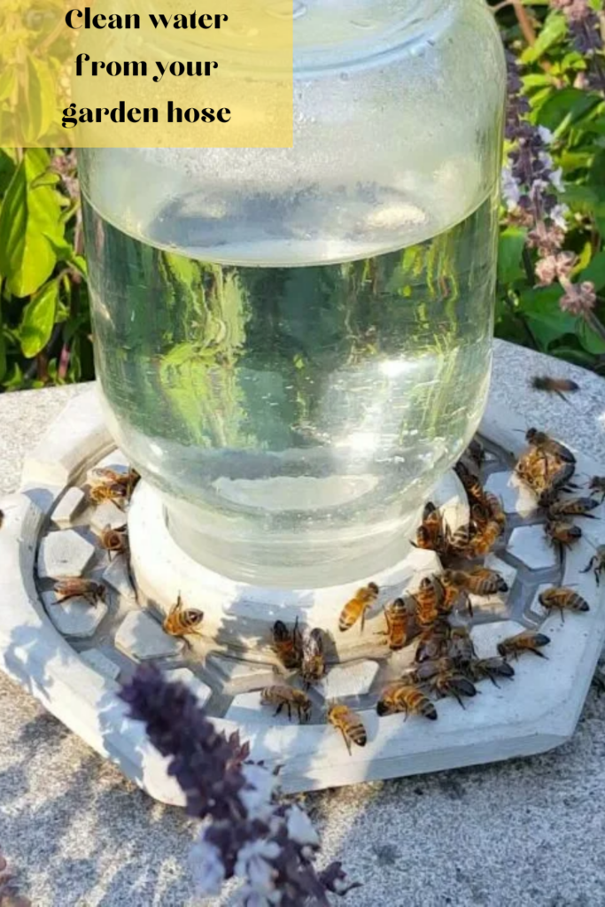 Fill your container with fresh, clean water from your garden hose.