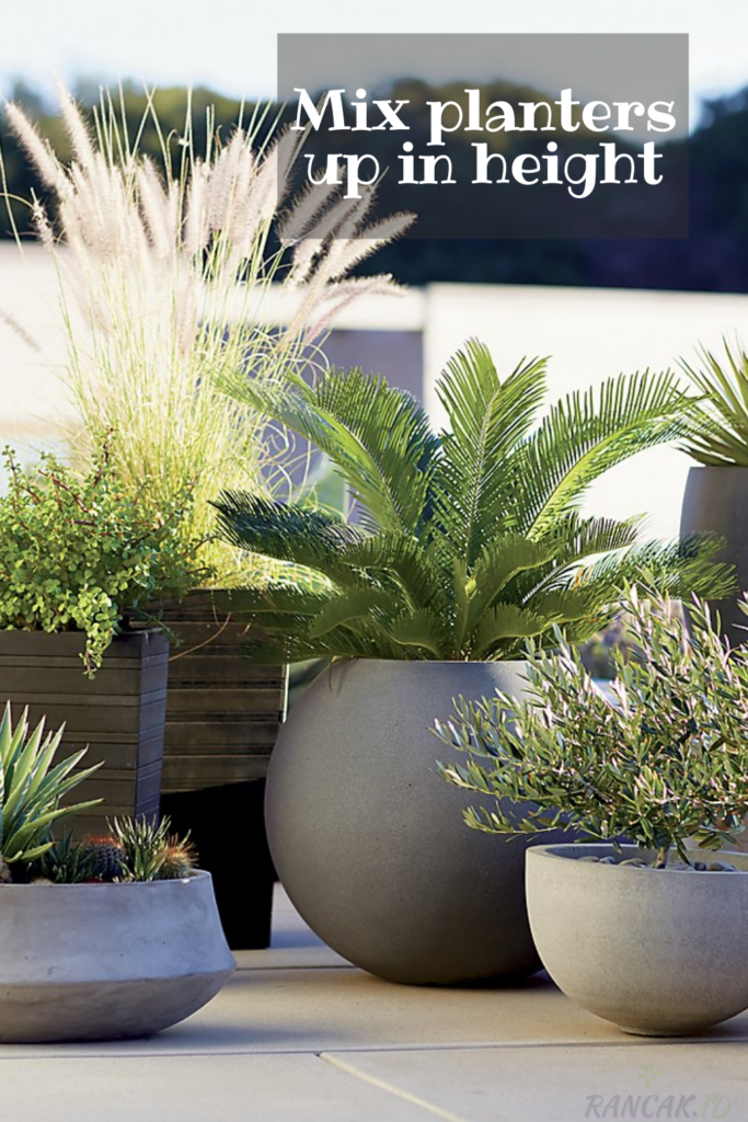 Mix planters up in height for visual interest