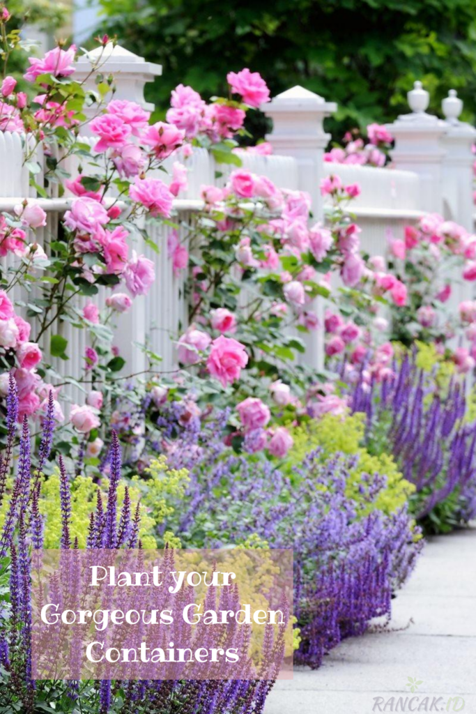 Plant your Gorgeous Garden Containers With Annuals, Perennials, and Bulbs.