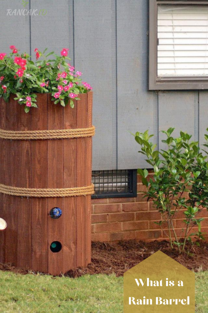 What is a Rain Barrel, and Why Should you Have One
